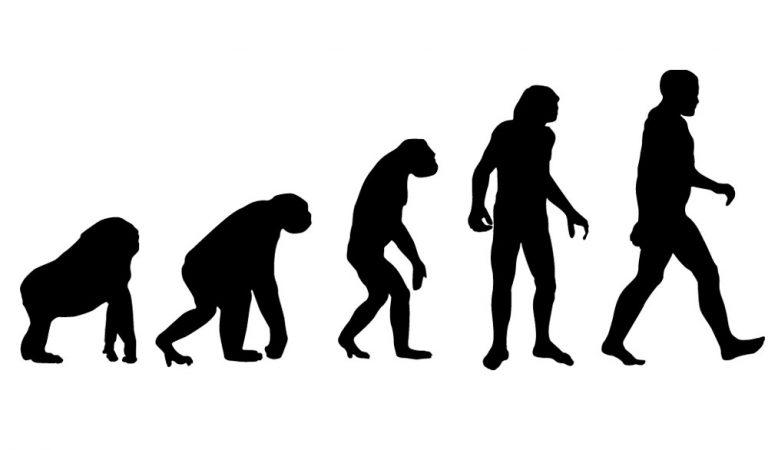 صورة متحركة معبرة تحكي قصة التطور بإختصار