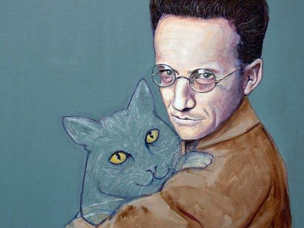 قطة شرودنجر والانفصام في ميكانيكا الكم