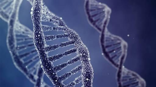 حوسبة الحمض النووى، فتح علمي جديد يمهد لثورة في الطب