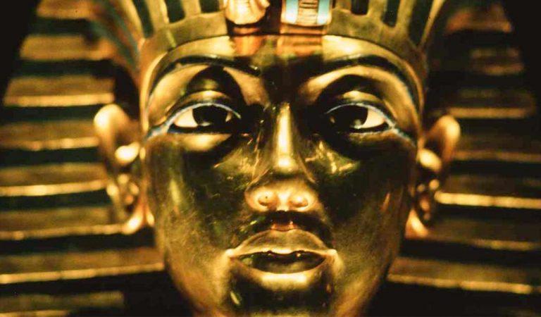 علماء الآثار قد يكونوا وجدوا أخيرًا مقبرة زوجة الملك توت.