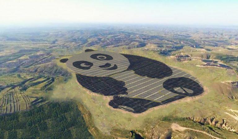 الصين تقوم ببناء مزرعة لتوليد الطاقة الشمسية على شكل باندا عملاقة
