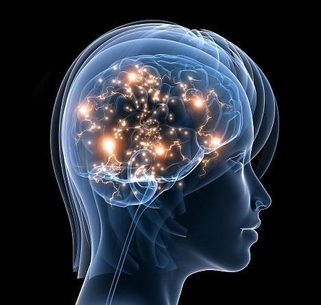 active_brain.jpg