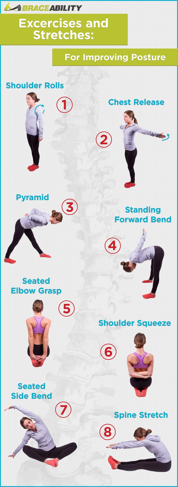 posture-stretches-infographic.jpg