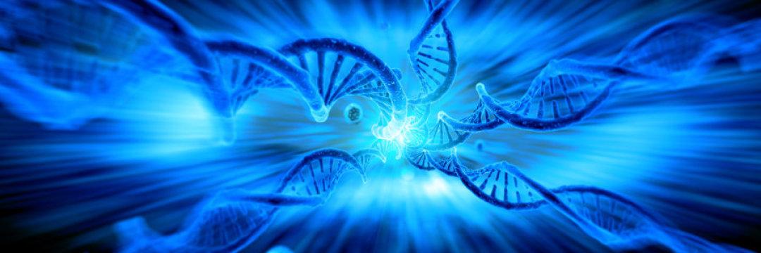 صورة لخلايا
