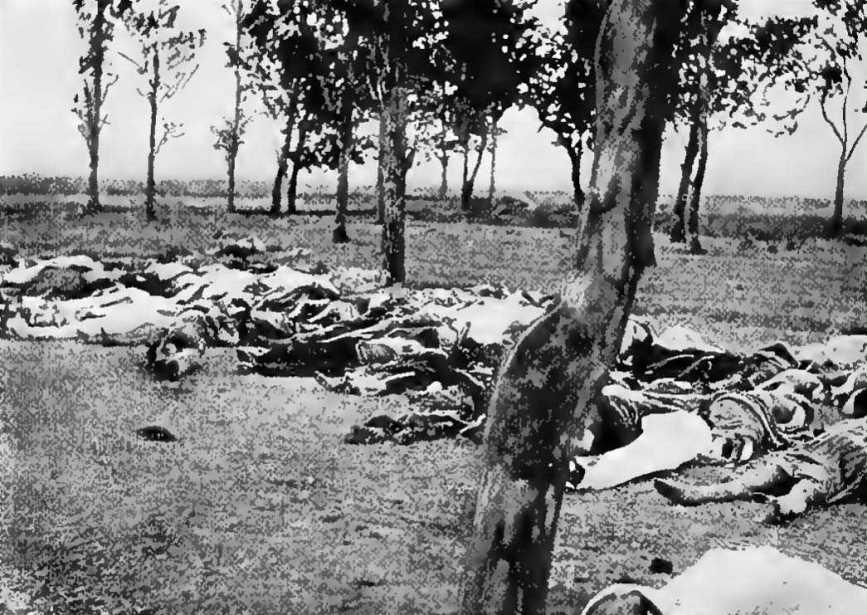 مذبحة الارمن